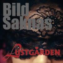 BildSaknas_edited-1