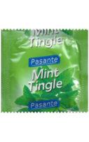 pasante-mint-1-pack-kondom